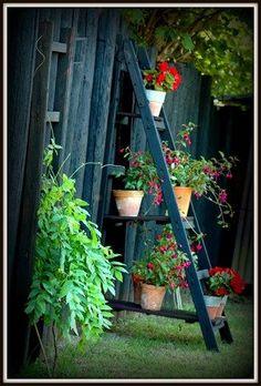 štafle jako stojan na květiny