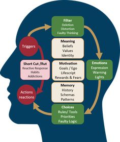 Aurorasa Coaching Emotional Intelligence Training, BrainDiamonds™, C Leadership Development, Self Development, Emotional Intelligence Leadership, Intelligence Quotes, Personal Development, Thinking Skills, Critical Thinking, Nlp Techniques, Mental Training