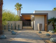 Image result for palm spring modern gardens