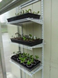 Great idea using closet wire racks for my greenhouse shelving. Greenhouse Shelves, Mini Greenhouse, Greenhouse Gardening, Container Gardening, Greenhouse Ideas, Greenhouse Staging, Farm Gardens, Outdoor Gardens, Garden Trellis