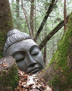 Possibly the most serene Buddha you will ever see