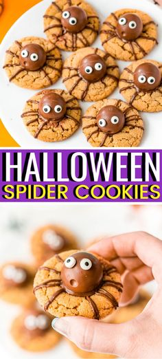 Halloween Spider Cookies are a spooky twist on classic Peanut Butter Blossoms! Made with truffles nestled in soft, chewy peanut butter cookies and decorated with chocolate and candy eyes. Halloween Desserts, Halloween Cookies, Halloween Treats, Halloween Party, Halloween Baking, Holiday Treats, Halloween Foods, Holiday Baking, Happy Halloween