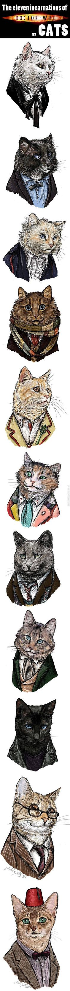 The eleven incarnations of Dr. Who as cats.