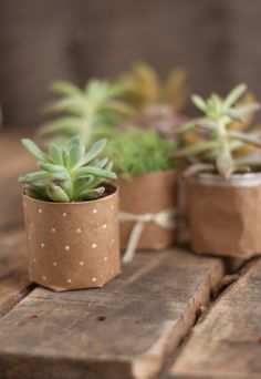 DIY Brown Paper Planters Tutorial