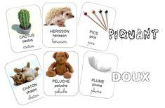 Le Noël de Hérisson Petite Section, Dog Food Recipes, Teddy Bear, Animals, Albums, Hedgehogs, Montessori, Preschool, Science