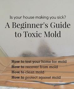 Have you experienced a mold exposure? Are you wondering if your home, school or office is making you sick? Learn more about health effects of toxic mold. Cleaning Mold, Cleaning Hacks, Glass Cleaning, Cleaning Recipes, Mold Exposure, Toxic Mold, Toxic Black Mold, Clean Black Mold, Remove Black Mold