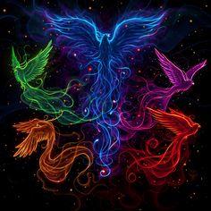 """Artwork cover of the upcoming cd album Rhiannon's Lark - Sky full of phoenix """"… Jj Tattoos, Badass Tattoos, Back Tattoos, Tattoos For Guys, Tatoos, Phoenix Design, Phoenix Tattoo Design, Phoenix Artwork, Phoenix Images"""