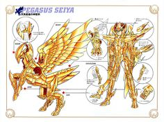 Saint Seiya, Pegasus God Cloth diagram