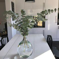 Ca y est les bonbonnes sont nettoyées, voici le résultat  J'adooooore  et vous ? #bonbonnes #damejeanne #damejeannebottle #vase #leboncoin #secretsdeco #secretsdeco91 #deco #decoration #homedecor #home #fleurs #flowers #eucalyptus #autrementdit