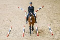 A superb, educational article w/easy-to-follow details & instructions - Better dressage through cavaletti training!