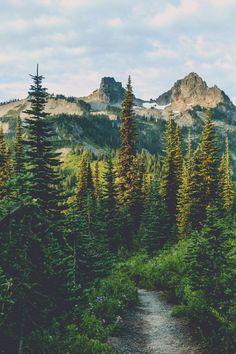 "red-head-wild-child: ""expressions-of-nature: ""Wonderland Trail / Mount Rainier, WA : Pedalhead'71"" """