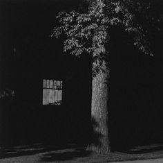 Google Image Result for http://www.americansuburbx.com/wp-content/gallery/robert-adams-summer-nights-walking/adams-from-summer-nights-walking9-1976-82.jpg