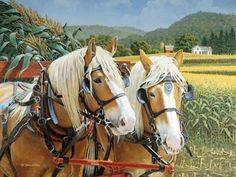 """John Sloane -- """"Maggie and Ben"""", Amish Belgian Draft Work Horses Most Beautiful Animals, Beautiful Horses, Country Art, Country Life, Farm Pictures, Life Pictures, Nostalgic Art, Marjolein Bastin, Work Horses"""