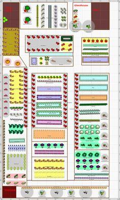 Garden Plan - 2013: wath allotment