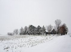 A country Winter Scene | by star_cosmos_bleu