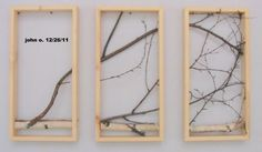 Birch Branch Wall Hanging, love it!