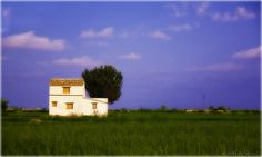 el delta by Marc Serarols on Flikr Ebro, Land Scape, Celestial, Sunset, Outdoor, Nature, Red Carnation, Carnations, Sunsets