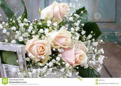 babys breath and pink flower - Google Search