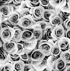 Flowers, Plants, Fabrics, Scrapbooking, Zipper, Button, Sewing, Tejidos, Dressmaking