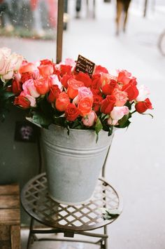 zinc and fleurs / watering cans, etc, X ღɱɧღ   