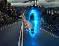 Mercedes Benz | Collision Prevention Assist