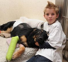 German Shepherd-Collie cross, Geo pushed 10 year old Charlie out of the way of a pick-up truck and took the full force of the vehicle. He has a broken leg, fractured spine and severe bruising but is expected to make a full recovery. More proof of the loving, loyal friendship of a dog <3