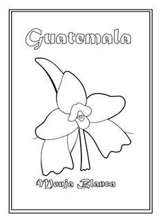 Guatemalan Monja Blanca para colorear #Guatemala national