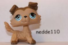 Littlest Pet Shop Collie Dog #893 FOURTH FAVORITE
