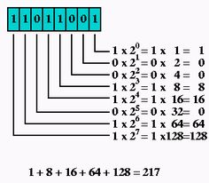 5 point decimal base binary options blog mauro betting palmeiras football