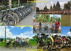 Persewaan Sepeda di Jogja, menyediakan sepeda Onthel dan Sepeda Gunung. Harga Sewa sepeda sangat murah, Fasilitas Sewa Sepeda : helm, Jasa angkut, Mineral water rute sepeda yang menarik. Informasi detail: http://sewasepedajogja.com