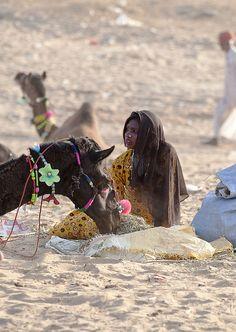 Pushkar 2011 by Koshyk, via Flickr The camel is wearing jewelry hahaha