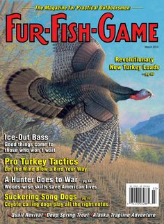 FUR-FISH-GAME - March 2014 : Pro TURKEY Tactics and Revolutionary Turkey LOADS, Ice-Out BASS Fishing, Woods-Wise Skills SAVE American Lives in War, Suckering COYOTES, QUAIL Revival, Deep SPRING TROUT, Alaska Trapline ADVENTURE, and much more.