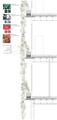 Brick Architecture, Sustainable Architecture, Sustainable Design, Architecture Details, Landscape Architecture, Landscape Design, Planer Layout, Green Facade, Architectural Section