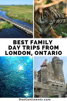 Check ou the list of top family-friendly day trips from London, Ontario. All with 1, 2 or 3 hours from the city. #daytrips #londonon #519 #ldn #ldngem #londononotario #ldnon #familytravel #familydaytrip #ontario #trip #roadtrip #canada #swontario #on2continents #canadiantravelblog Day Trips From London, Canadian Travel, Stunning Photography, Young Female, Family Day, London City, World Traveler, Continents, Family Travel