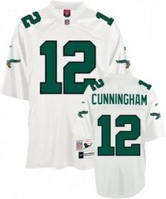 Michael Vick Dog Jersey Sanctioned By Nfl