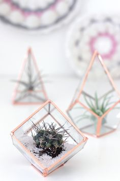 These DIY Glass Terrariums are amazingly adorable. Made with hints of rose gold and copper, these mini pieces of decor are also trendy—making them the perfect handmade gift idea.