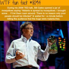 Bill Gates on TED talk - WTF fun facts