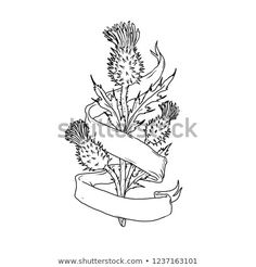 Scottish Thistle With Ribbon Drawing Black and White Art Print by patrimonio - X-Small Tattoo Sketches, Drawing Sketches, Corn Drawing, Scottish Thistle Tattoo, White Art, Black And White, Ribbon Tattoos, Detailed Drawings, Freelance Illustrator