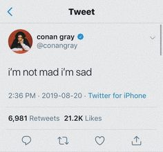 Conan Gray Aesthetic, Cool Lyrics, Relatable Tweets, My Mood, Deep Thoughts, Words Quotes, Feelings, Random, Memes