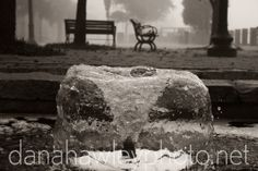 foggy day at water front park, downtown wilmington, nc.  #fog #foggy #fountain #bench #historic #scenic #print #wilmington #nc #capefearmemorialbridge #sunset #bridge #ilm #downtown #river #capefear  {{ scenic print available }} // more information at danahawleyphoto.net!