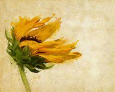 Sunflower Breezes, copyright Nikki Smith · Watercolor Sunflower  TattoosWatercolor ...