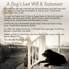 A Dog's Last Will & Testament