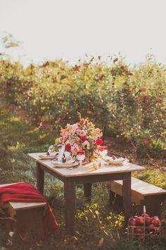 "Apple-orchard dining ""en plein air"""