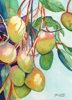 Mangoes Watercolor Painting Original from Kauai Hawaii tropical fruit green yellow sky blue mango