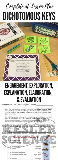 Sexual and Asexual Reproduction 5E Lesson Plan Pinterest Science - unit lesson plan template