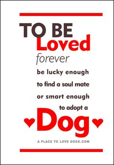 To Be Loved Forever | Quote • To be loved forever be lucky enough to find a soul mate or smart enough to adopt a dog.