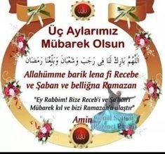 Christmas Bulbs, Holiday Decor, Muslim, Pictures, Christmas Light Bulbs, Islam