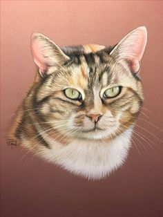 Portrait in pastel Kittens Cutest, Cats And Kittens, Cute Cats, Pastel Portraits, Pet Portraits, Chats Image, Painting Fur, Cat Sketch, Smart Art