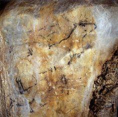 Cueva Las Monedas #Cantabria #Spain #Travel #Caves #Prehistory Cro Magnon, Art Pariétal, Paleolithic Art, Lab, Spain Travel, Ancient Art, Picture Wall, Rock Art, Archaeology