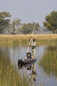 Photographic safaris in the Okavango Delta, Botswana Tanzania, Kenya, Travel Around The World, Around The Worlds, Safari Holidays, Okavango Delta, Once In A Lifetime, African Safari, Africa Travel